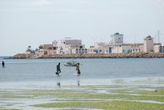 Tunisian fishermens in flowering green sea Stock Photo