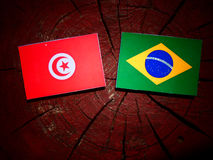 Tunisian flag with Brazilian flag on a tree stump isolated. Tunisian flag with Brazilian flag on a tree stump royalty free stock images