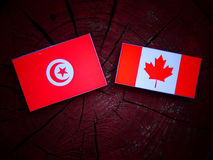 Tunisian flag with Canadian flag on a tree stump isolated. Tunisian flag with Canadian flag on a tree stump stock photography