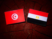 Tunisian flag with Egyptian flag on a tree stump royalty free stock photography