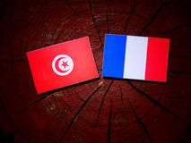 Tunisian flag with French flag on a tree stump isolated. Tunisian flag with French flag on a tree stump royalty free stock photo