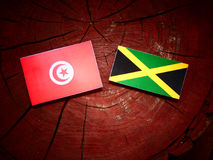 Tunisian flag with Jamaican flag on a tree stump isolated. Tunisian flag with Jamaican flag on a tree stump stock images