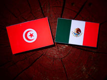 Tunisian flag with Mexican flag on a tree stump isolated. Tunisian flag with Mexican flag on a tree stump stock photography