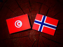 Tunisian flag with Norwegian flag on a tree stump isolated. Tunisian flag with Norwegian flag on a tree stump stock photography
