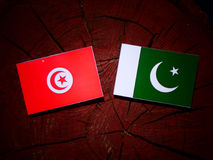 Tunisian flag with Pakistan flag on a tree stump isolated. Tunisian flag with Pakistan flag on a tree stump stock illustration