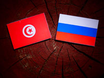 Tunisian flag with Russian flag on a tree stump royalty free stock photography