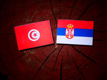 Tunisian flag with Serbian flag on a tree stump isolated. Tunisian flag with Serbian flag on a tree stump royalty free stock photo