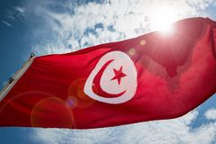 Tunisian Flag and Sky. Tunisian flag waving in the wind with lens flare in Monastir, Tunisia royalty free stock photography