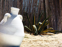 Jug in Tunisian garden. White pottery jug in sand with reed fence and plant in Tunisian garden stock photo