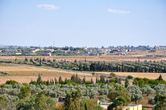 Tunisian landscape next to the Friguia park. Hammamet, Tunisia. Royalty Free Stock Photo