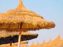 Thatch umbrellas, Hammamet, Tunisia. Thatched umbrellas against blue skies in Hammamet, Tunisia stock photography