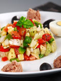 Tunisian salad with tomatos, cucumbers and tuna Royalty Free Stock Images
