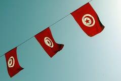 Tunisien flaggor tunisia Royaltyfri Fotografi