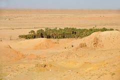 Tunisien oas Chebika Royaltyfri Foto