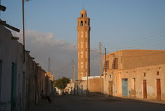 Tunisien Tozeur Arkivfoto