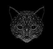 Tunn linje stil för vektorkatt För katt poly designillustration lågt Abstrakt däggdjurs- djur Geometrisk polygonal kontur vektor illustrationer