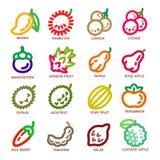 Tunn linje symbol för frukt Royaltyfria Bilder