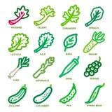 Tunn linje symbol för grönsak Royaltyfri Bild