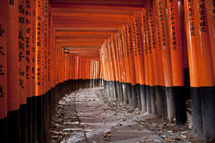 Tunnel of 10000 torii gates. At the Fushimi-Inara Taisha Shrine Stock Photo