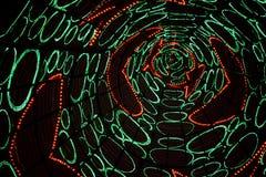Tunnel 2 de lumières de Noël Images libres de droits