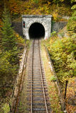 Tunnel. Old brick tunnel in the mountains in autumn Stock Image