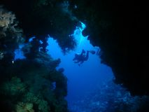 The tunnel. Entrence to a tunnel in the reef wall, at about 40 m depth stock photo