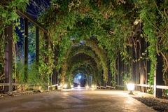 Tunnel arch pathway garden illuminate. Lighting Stock Image