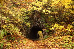 Tunnel with autum leaves Stock Photography