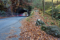Tunnel with autum leaves and trail lights Stock Photos