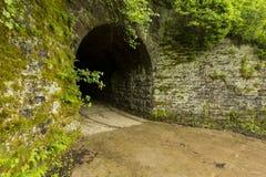Tunnel aux bois Photos libres de droits