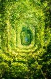 Tunnel av förälskelsejärnvägen Arkivfoton