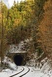 Tunnel av järnvägen och skogen ovanför den royaltyfri bild