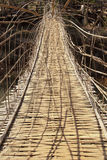 Tunnel bamboo weave bridge Stock Images