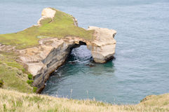 Tunnel beach at Otago Peninsula. New Zealand Royalty Free Stock Images