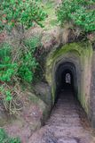 The tunnel of Tunnel Beach walkway, near Dunedin, Otago, South Island, New Zealand stock photo