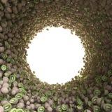 Tunnel circolare del kiwi Fotografia Stock Libera da Diritti