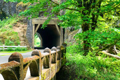 Tunnel in Columbia River Gorge. Tunnel in the forest in the Columbia River Gorge in Oregon royalty free stock photography
