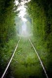 Tunnel d'amour en Roumanie Photo stock