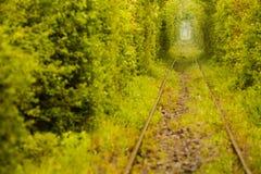 Tunnel d'amour en Roumanie Images libres de droits
