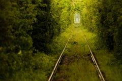 Tunnel d'amour en Roumanie Photos libres de droits