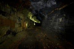 Tunnel de chemin de fer hors d'usage foncé Images stock