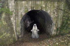 Tunnel de chemin de fer de Cadeby Ghost Mexborough Ragger photos libres de droits