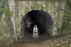 Tunnel de chemin de fer de Cadeby Ghost Mexborough Ragger images libres de droits