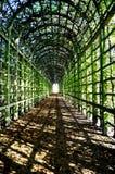 Tunnel de feuillage Photographie stock