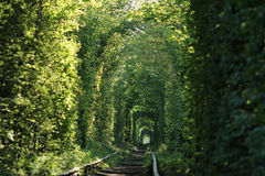 Tunnel de l'amour Photos libres de droits