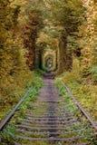 Tunnel de l'amour Image stock
