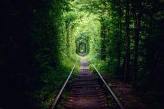 Tunnel de l'amour Photo stock