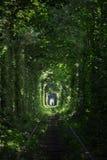 Tunnel de l'amour chez l'Ukraine image libre de droits