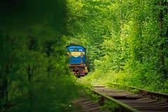 Tunnel de l'amour en Ukraine image libre de droits