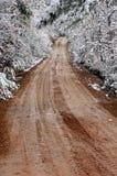 Tunnel de l'hiver de pays Image stock